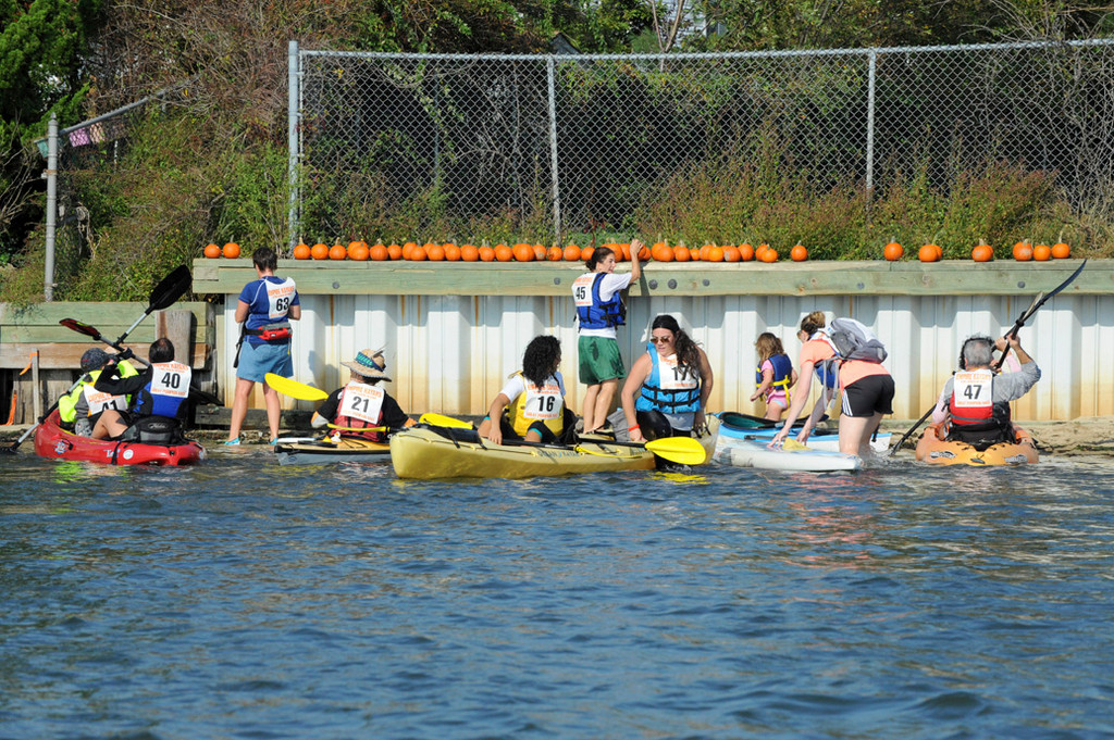 Participants raced to grab their pumpkins after they beached their kayaks.