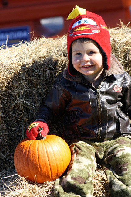 Kamren Bernstein, 2, found the perfect pumpkin for Halloween at the East Meadow Farms.