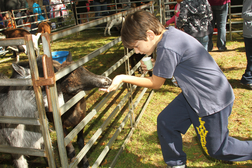 At last weekend�s Rock Hall Country Fair, Frankie Martin Jr., 9, got acquainted with one of the goats in the petting zoo. The 27th annual fair featured a variety of crafts and attractions, including a Civil War 
