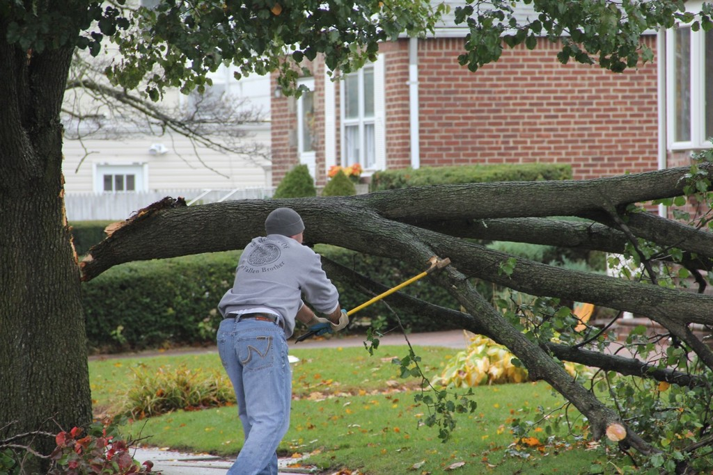 A resident tried to chop up a fallen tree on Claflin Street in Franklin Square.