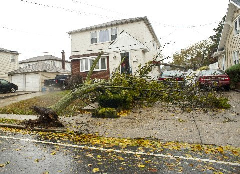 Tree down on South Park Ave. in East Rockaway