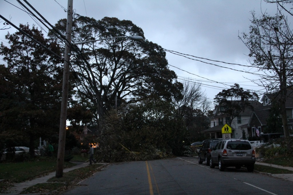 Trees were down all over the South Shore, such as this one on Lakeview Avenue in Rockville Centre.