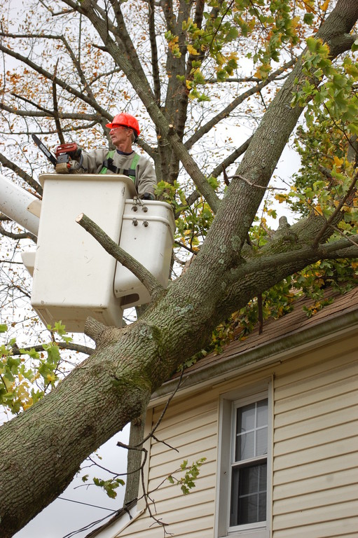 Highway Supervisor Tim Leahy clears a tree that fell on a home on Emerson Place.