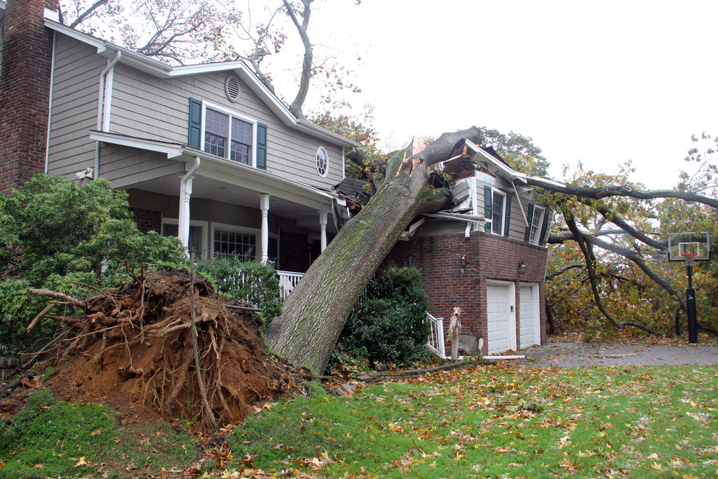 Residents of this house on Marlboro Ct were in their bedroom but were okay when this tree was uprooted.