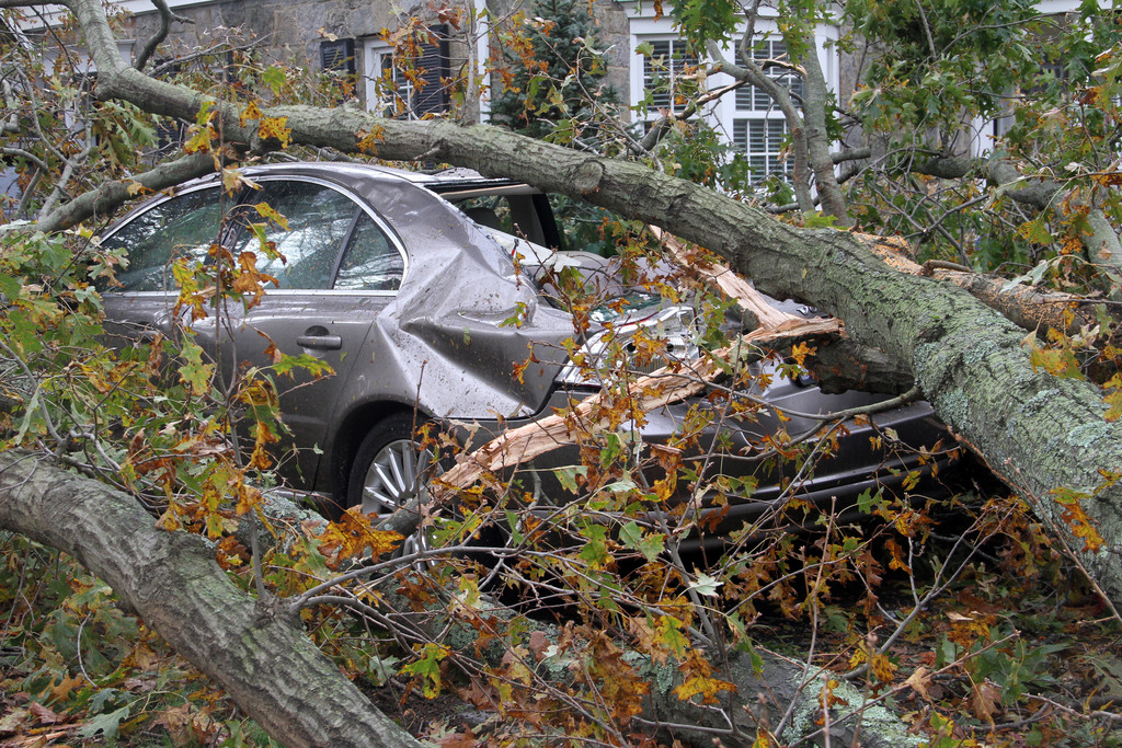 This car on Arrandale Road took a direct hit from Hurricane Sandy.