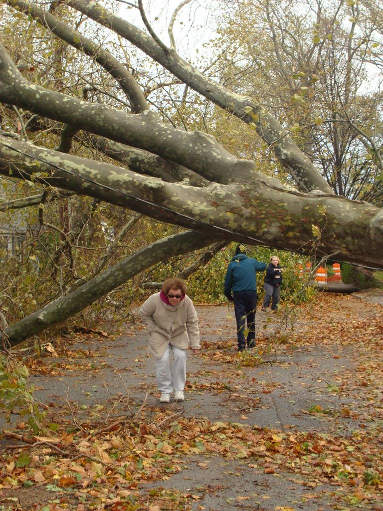 A resident ducks under a fallen tree on Oceanview Road in East Rockaway.