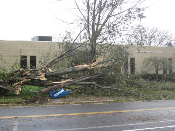 Downed trees in front of the East Meadow Public Library on Front Street.
