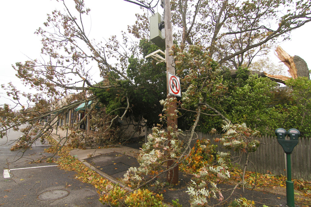 On Cedarhurst Avenue by Central Avenue in Cedarhurst, a tree felled by Hurricane Sandy spilled onto the street.