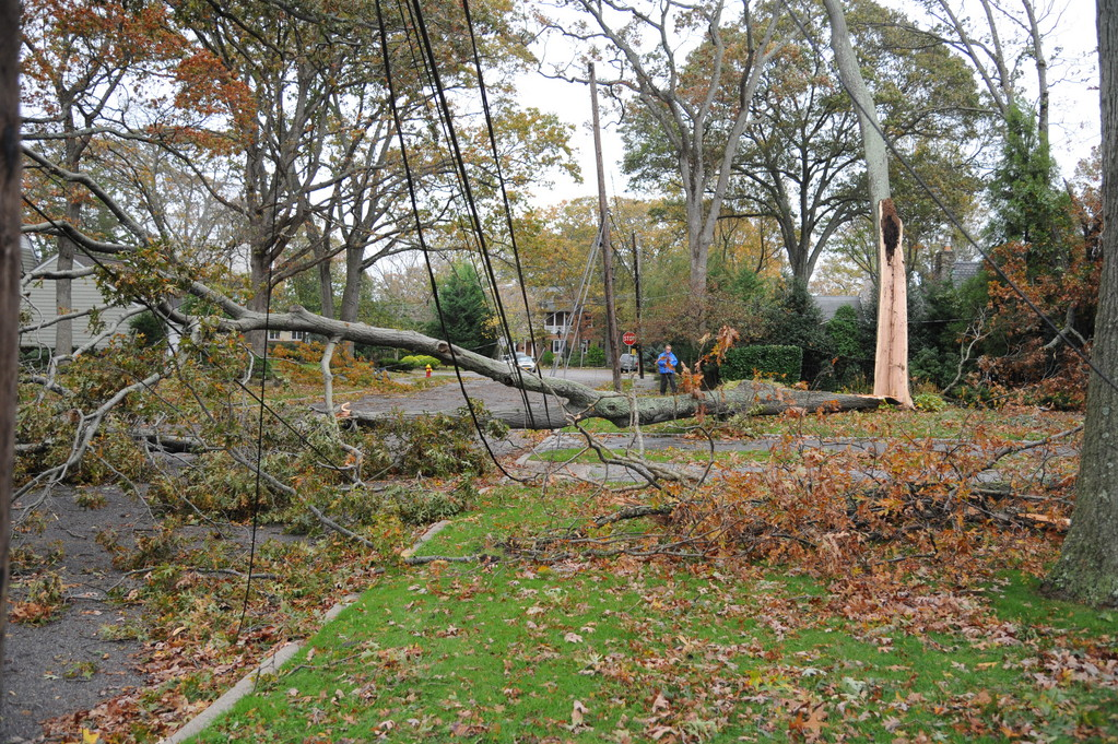 Hurricane Sandy sent trees crashing into power lines throughout the Bellmores and Merricks. Hardest hit were south Bellmore and south Merrick, which, in addition to downed trees, also had to contend with severe flooding. On Monday, Nassau County was preparing to send electrical inspectors into flooded homes to make sure it was safe to turn the power back on.