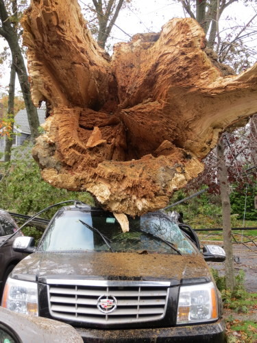 Courtesy Steve Grogan