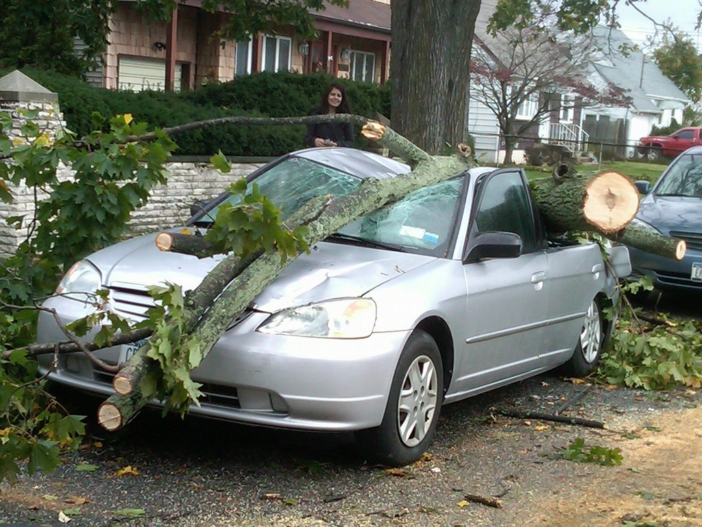 Hurricane Sandy's 55-plus-mph winds brought this tree down on a car on 5th Street.