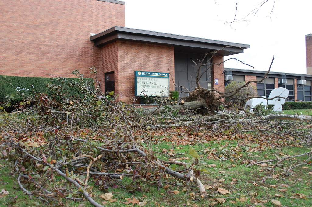 Willow Road School in District 13, which had many trees fall down on its property, also was the last school to get power back.