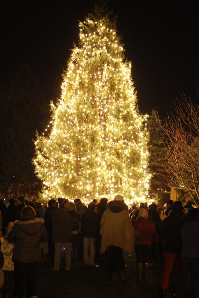 The village tree was all aglow.