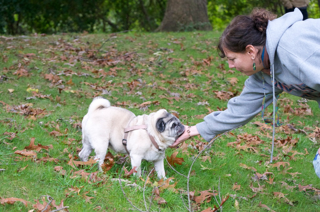 Judy Lauterstein and her pug, Chicky, take walks at the Hempstead Lake State Park nearly every day to stay healthy and release energy.
