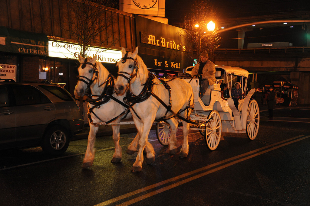 Bellmorites had the chance to take a horse and carriage ride around the community to look at holiday lights last Friday. The rides were one of several attractions at the Tree Lighting and Holiday Extravaganza, hosted by the Chamber of Commerce of the Bellmores.