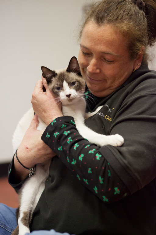 Isis, a 1-year-old female feline, held by Linda Ower was one of the animals up for adoption at Fido Fitness.