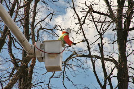 LIPA and National Grid have called in more tree trimming crews in preparation for the storm. The high winds knocking down lines is a chief concerns.