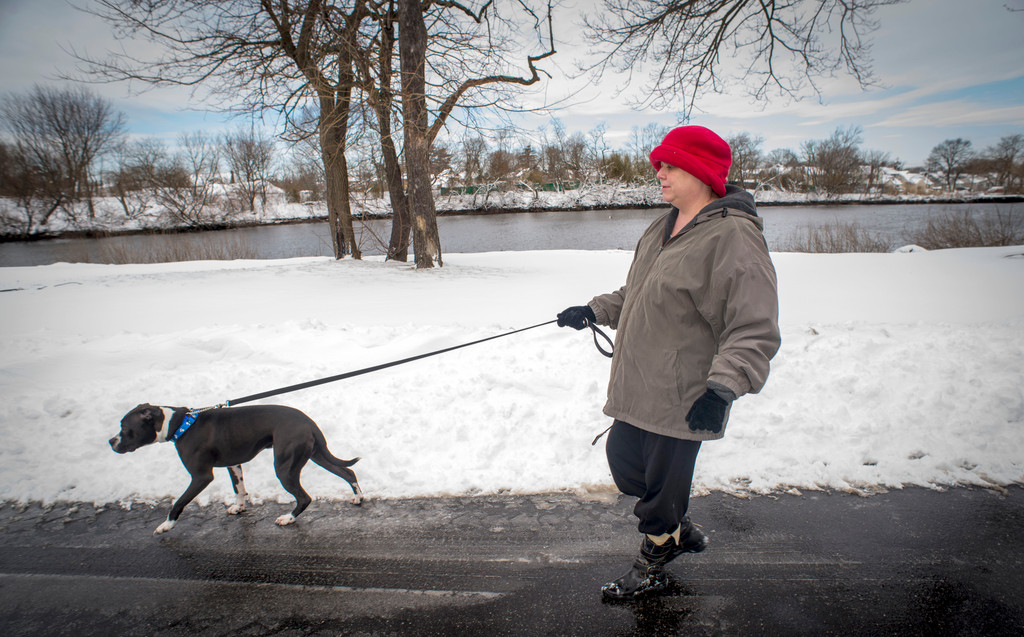 Christine Cipriano and her newly adopted 2-year-old Boxer Clyde from the Second Chance Shelter took a walk along the Mill River.