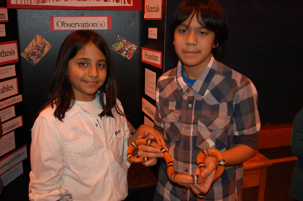 Forest Road School sixth-graders Jabrael Basdeo and SeanCris Luyun conducted an experiment on how people react to snakes.