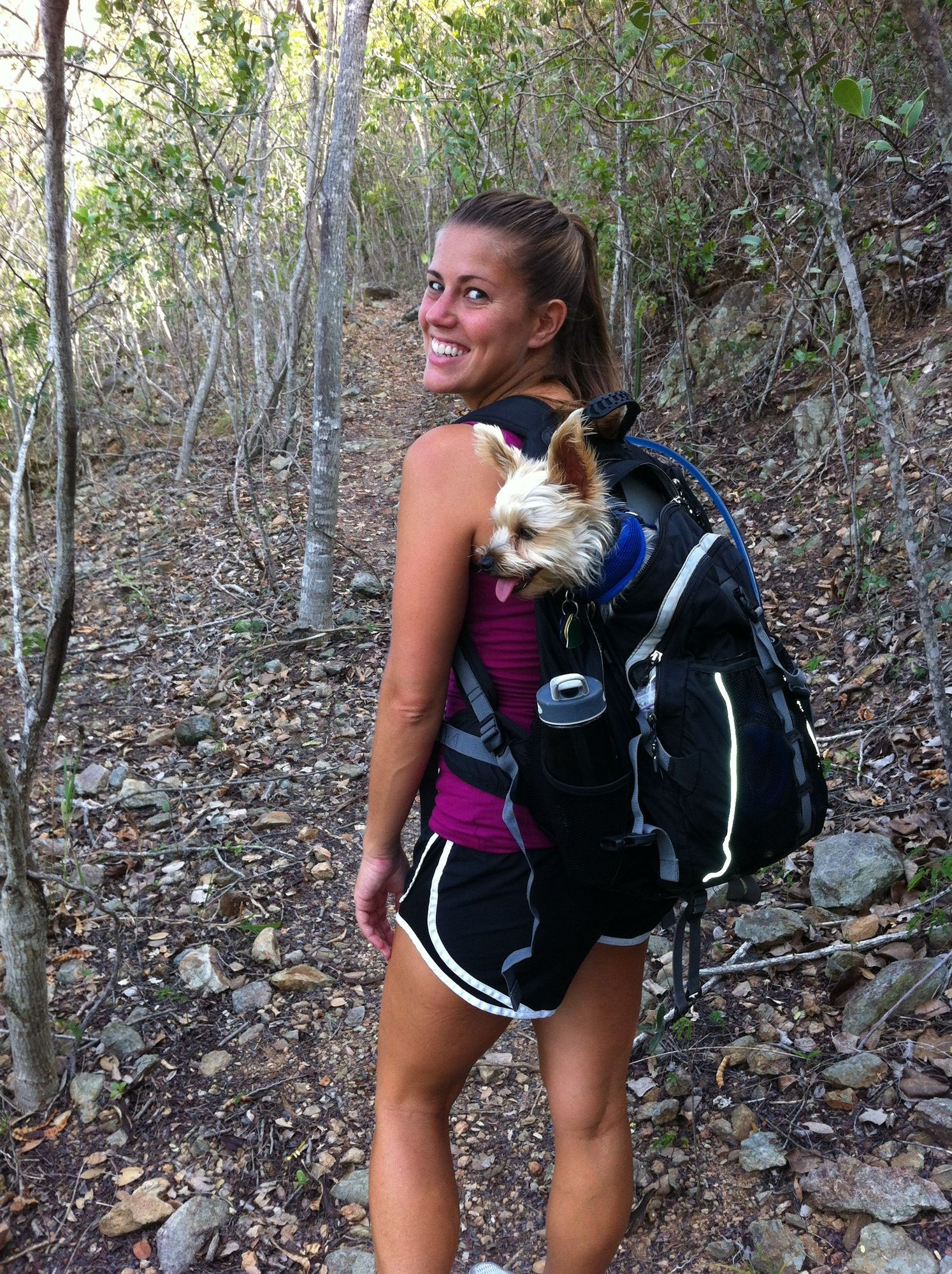 Alisa, her husband, Mike, and a Yorkie named Rocky, lived for a year in the U.S. Virgin Islands.