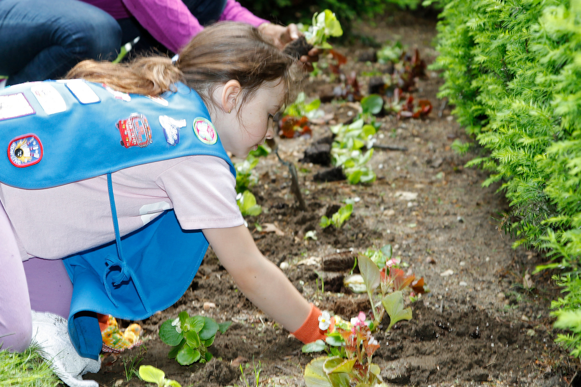Six-year-old Katie Dolan, a Daisy in Troop 813, planted many flowers.