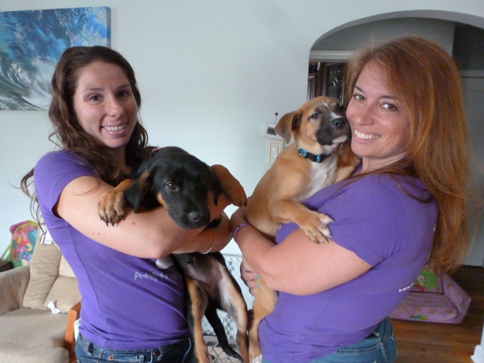 Kristen Prelesnick, left, and Kimberly Hock cradle their newest rescue dogs, Chance and Brenda, two 3-month-old pups that were rescued from two shelters in South Carolina.