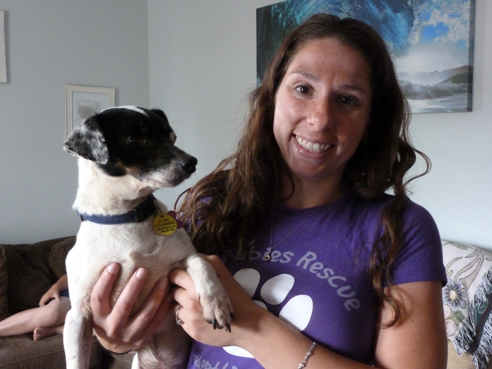 Fostered canines of Fur Babies receive custom ID tags, as modeled above by Oscar, a Jack Russell mix who has lived with Kristen Prelesnick for one month.