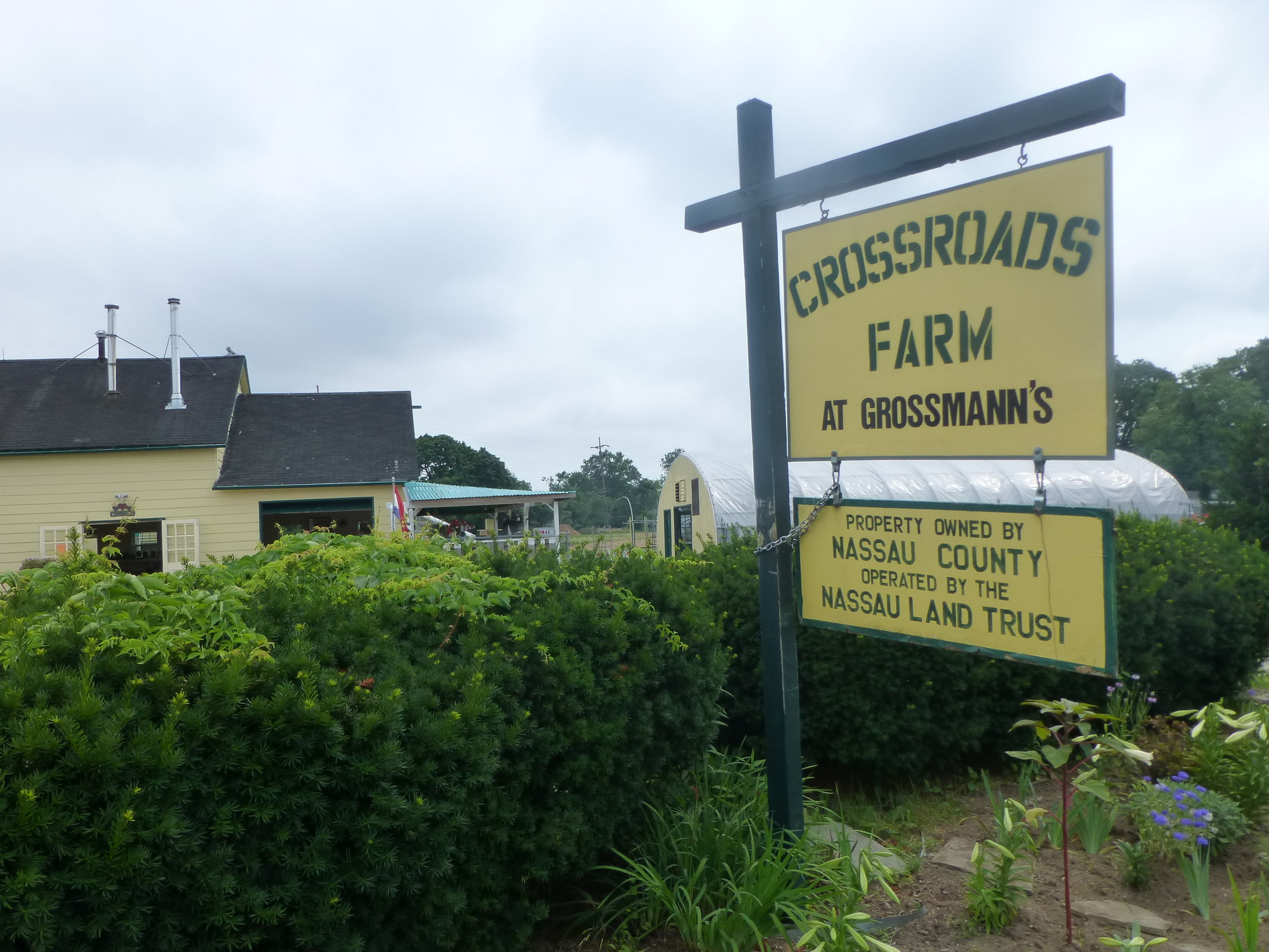 The Nassau Land Trust purchased a parcel of the Grossmann's property in 2010 to conserve the farmland and establish Crossroads, the last farm in southern Nassau County.