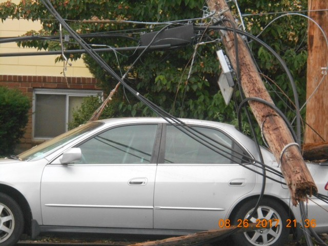 Several Elmont residents' cars were damaged as a result of fallen trees.
