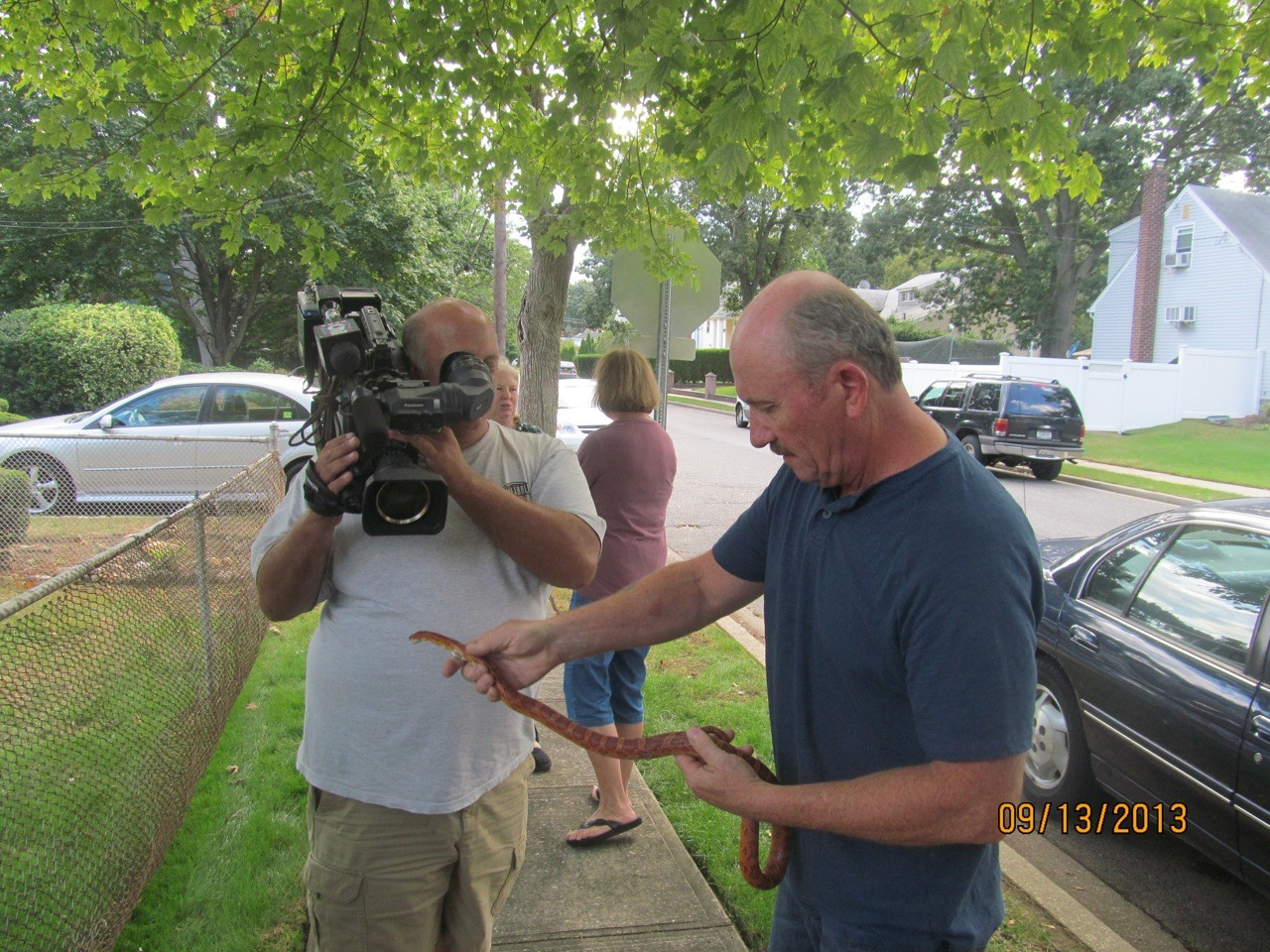 East Meadow resident Kevin Burke holds a corn snake that was found loose on the corner of Stuyvesant Avenue and York Street on Friday, Sept. 13. Before it could be trapped, a car accidentally ran over and killed the snake.