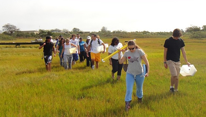 The Hofstra University Biology Department has been awarded a grant to clean up a Long Beach salt marsh that students often use to study a marine habitat.