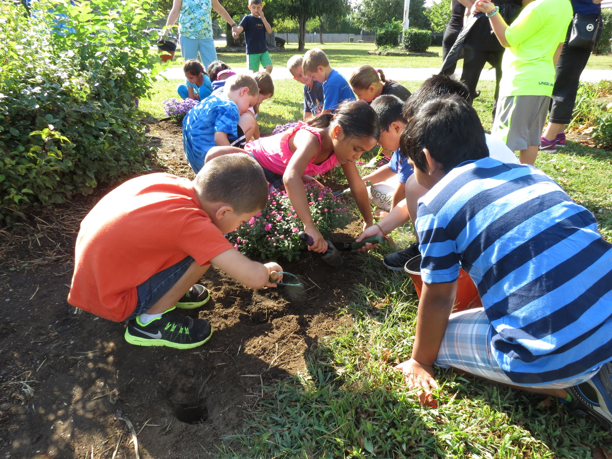Second-graders at Meadowbrook Elementary School dug deep into the earth with miniature shovels to plant new flowers during the school