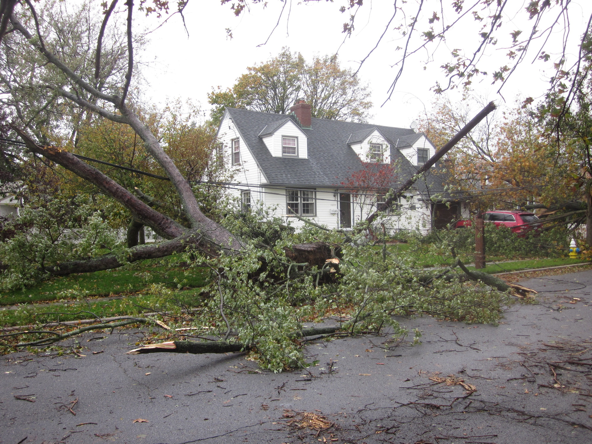Fallen trees and downed power lines were a common sight in East Meadow last October.