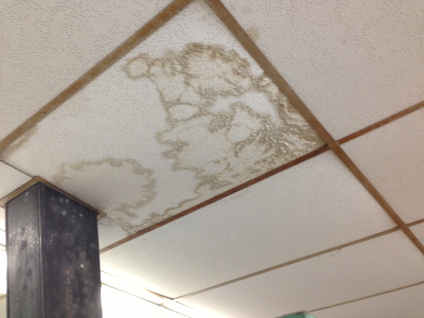 Water stains on ceilings, like this one in a Kennedy High School art room, can be found throughout the district because of leaky pipes and roofs.