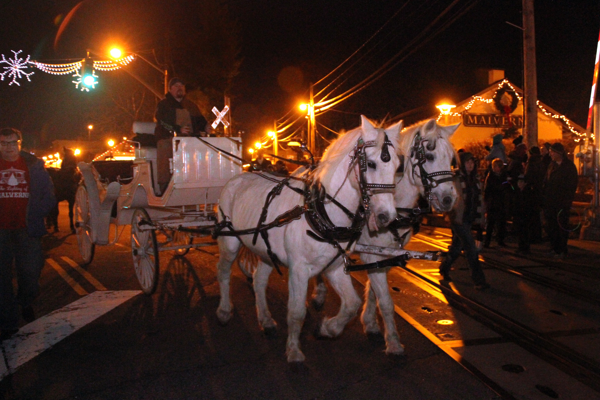 A 2-horsepower carriage offered a scenic ride around the Village of Malverne for visitors at this year's tree lighting ceremony last Saturday.