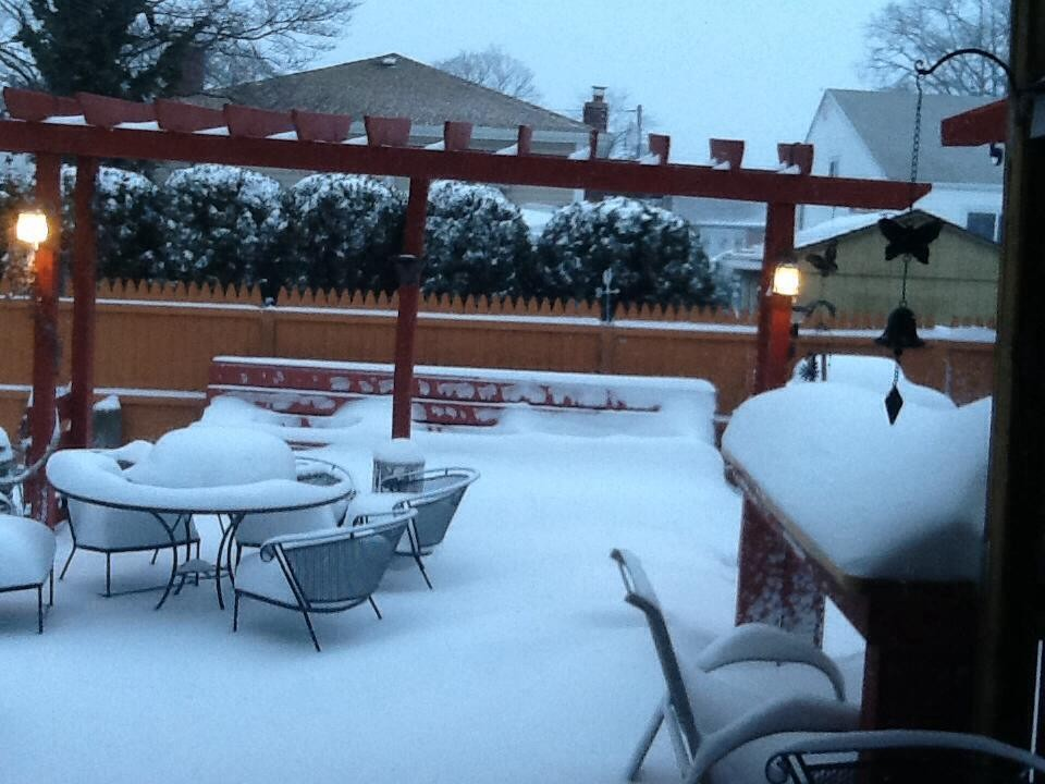 Jim Zabatta's backyard on Regent Street in Valley Stream was covered with snow Friday morning.