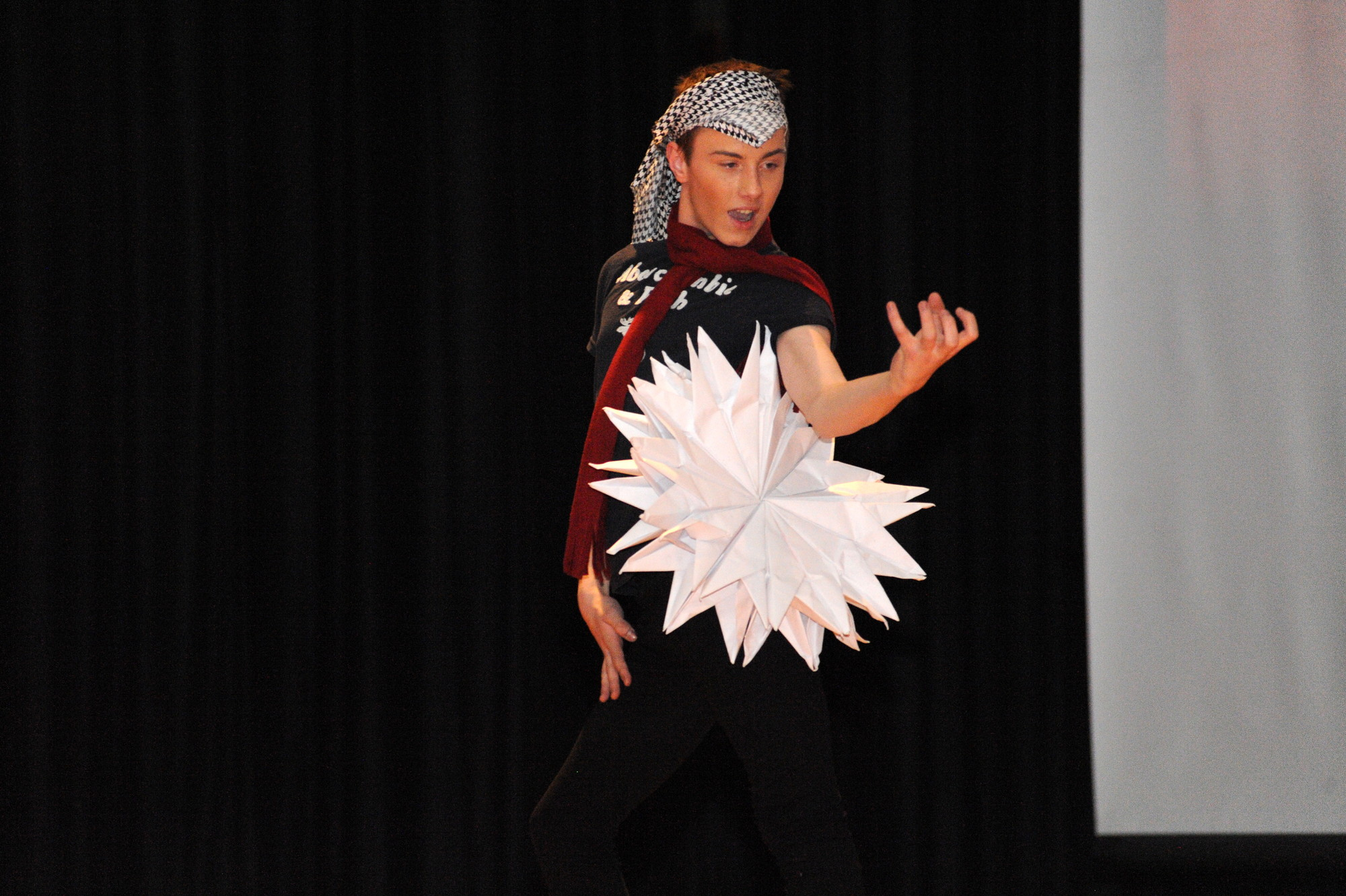 Freshman Sean Flynn performed a dance routine to 'Bad Romance' by Lady Gaga in a paper costume that took him more than 10 hours to create.