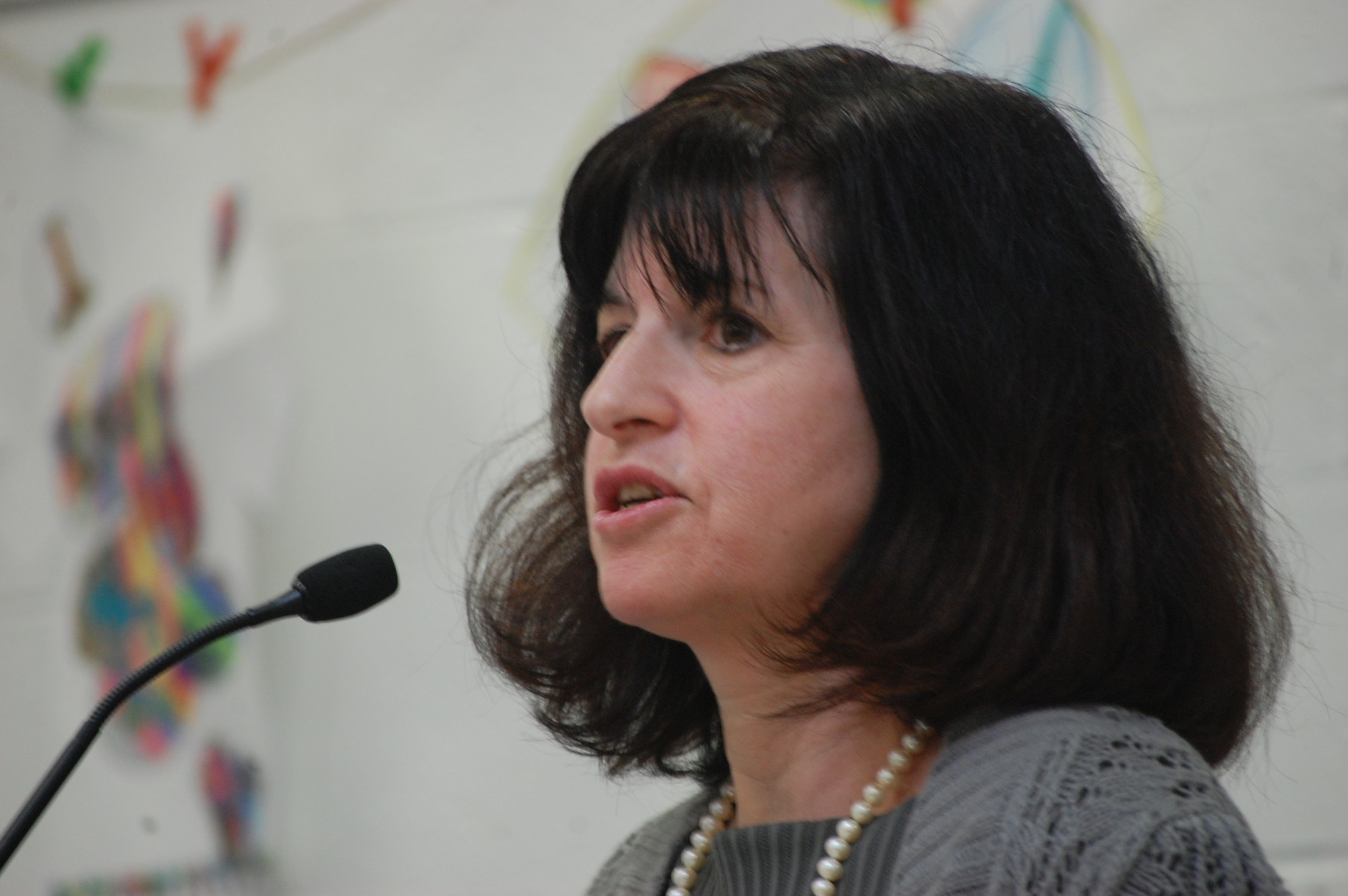 High School Board President Elise Antonelli called for changes to the law that funds charter schools by taking money away from public education.