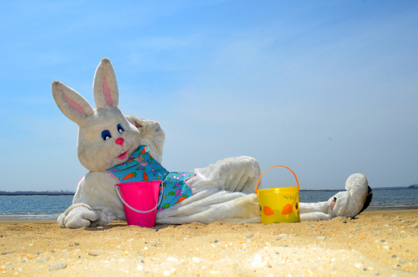 The Easter Bunny hanging out  at the beach.