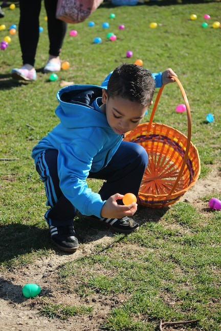 Ethan Johnson, 4, looked for one of the prize-winning eggs at the hunt at the Recreation Centre on Saturday.