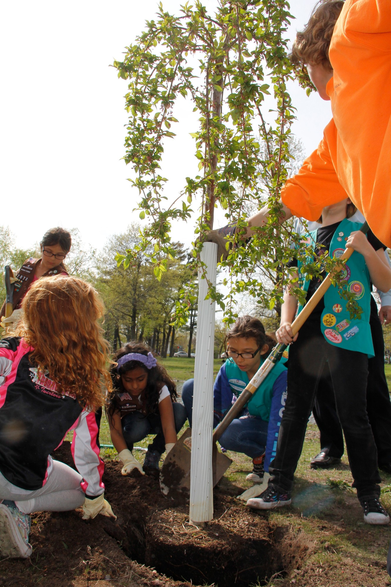 Girl ScouTs planted a new tree at Cahill Park with the help of the village Parks Department.
