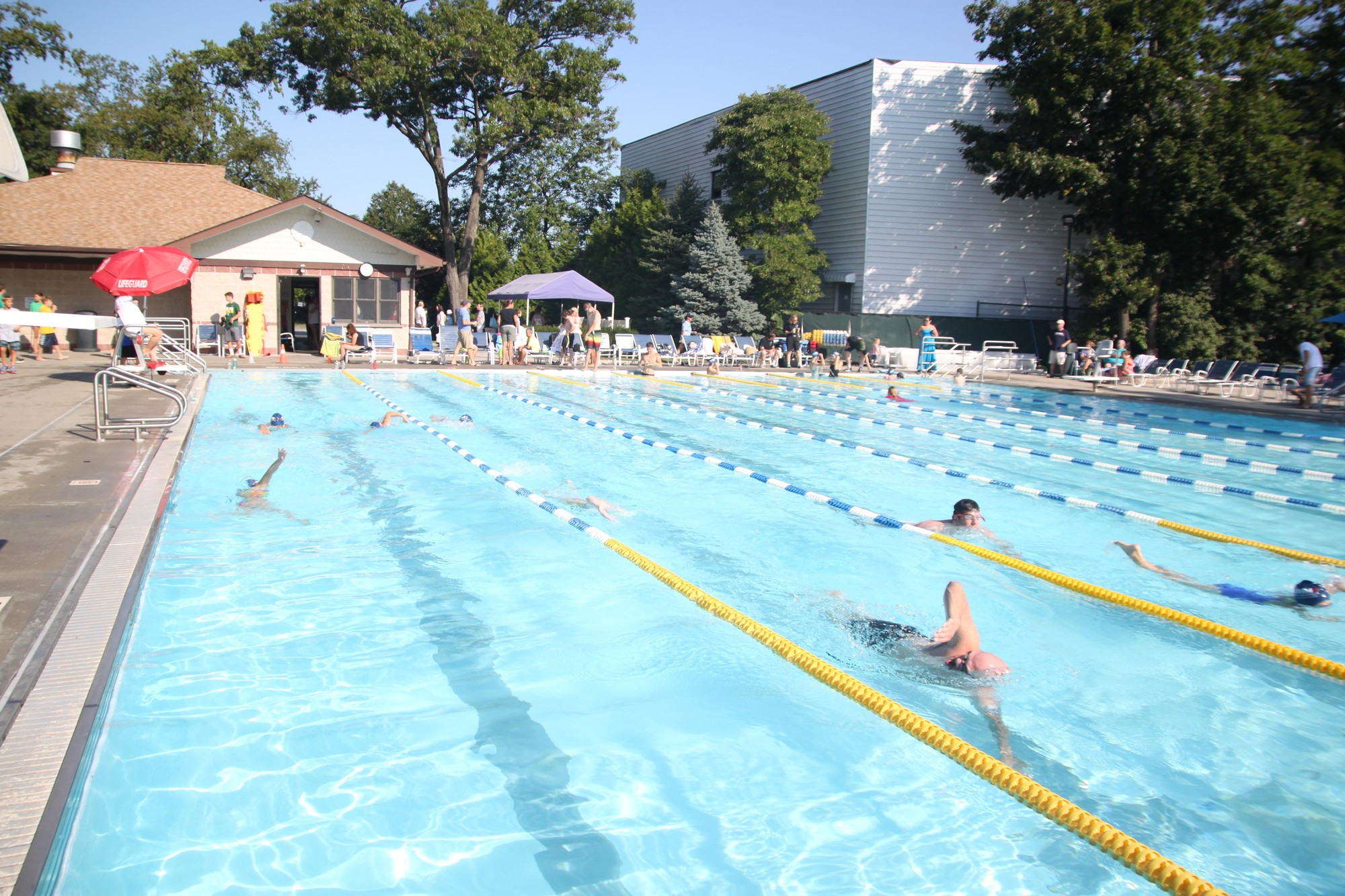 Rvc lynbrook agree to pool use herald community - Pools on the park swimming lessons ...