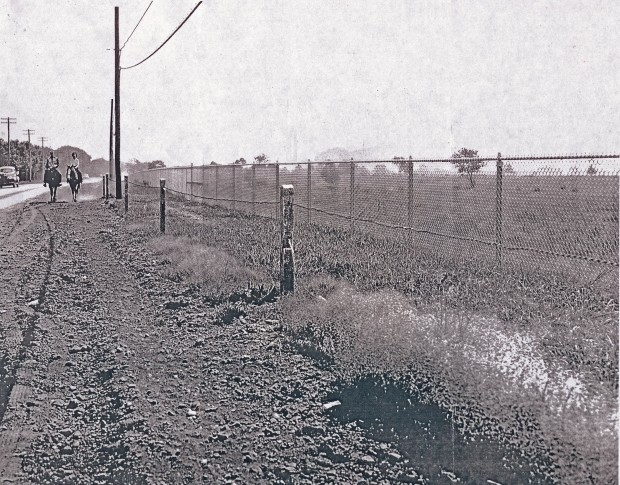 The same view, heading toward Carman Avenue, in the 1940s.