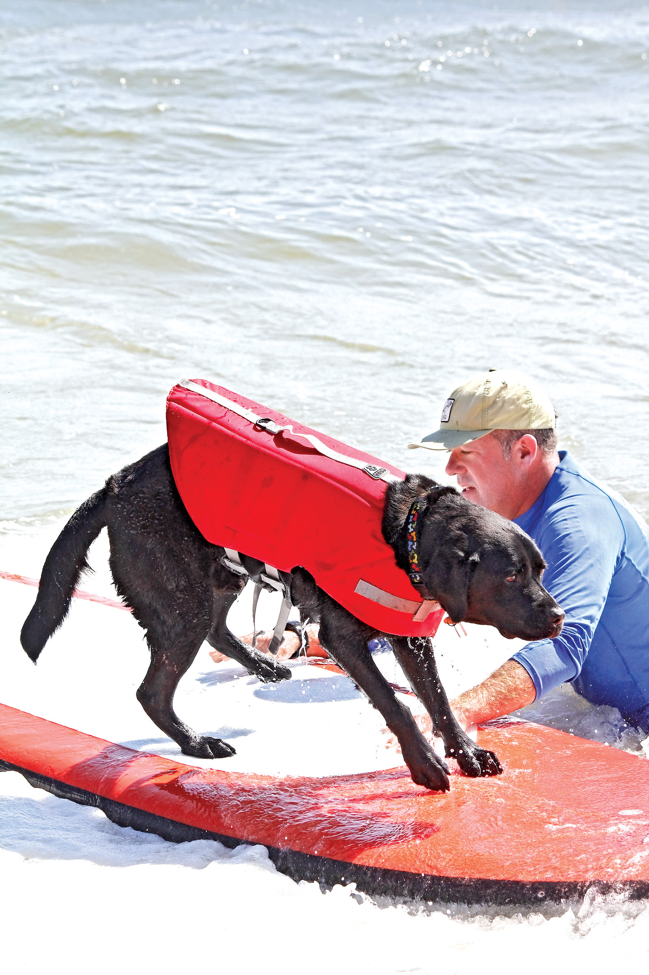 Norm the surfing dog was on hand to raise money and awareness for the Tommy Brull Foundation and Camp Anchor.
