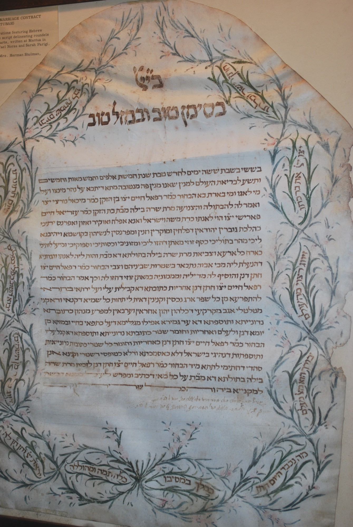 A 1799 ketubah on Italian parchment on display in the May Museum of Temple Israel. It is Jewish prenuptial agreement that outlines the rights and responsibilities of the groom, in relation to the bride.