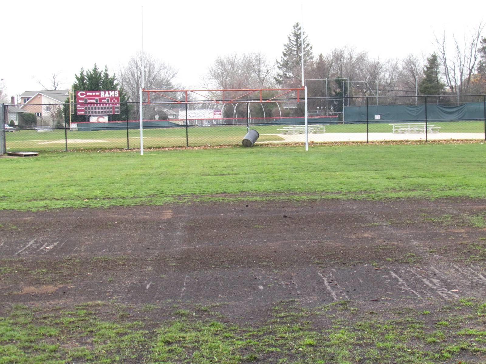 If the bond is approved, fields worn from overuse will be restored as multi-use natural grass fields at East Meadow and W.T. Clarke High Schools.