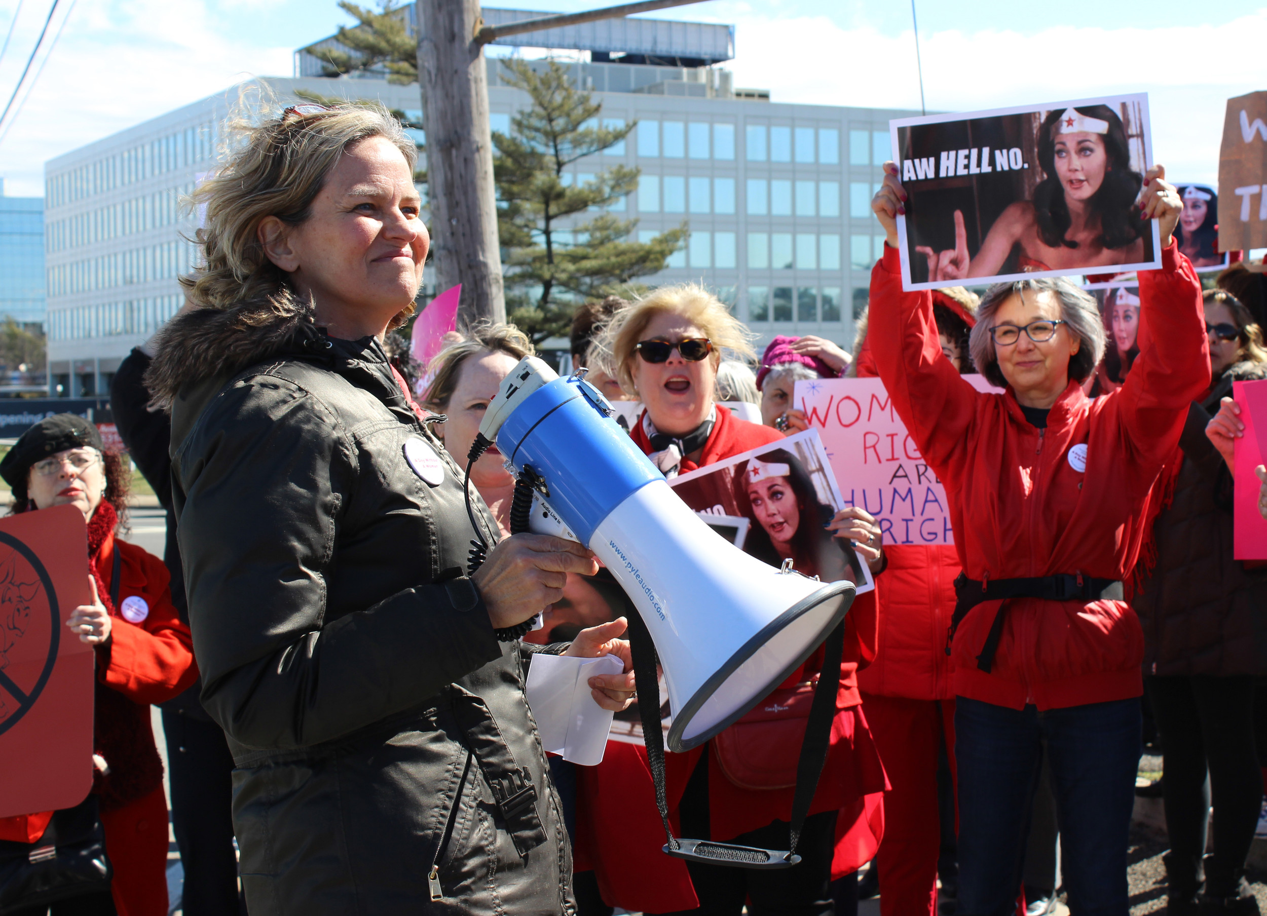 Nassau County Legislator Laura Curran urged a crowd of cheering women to get involved in politics.