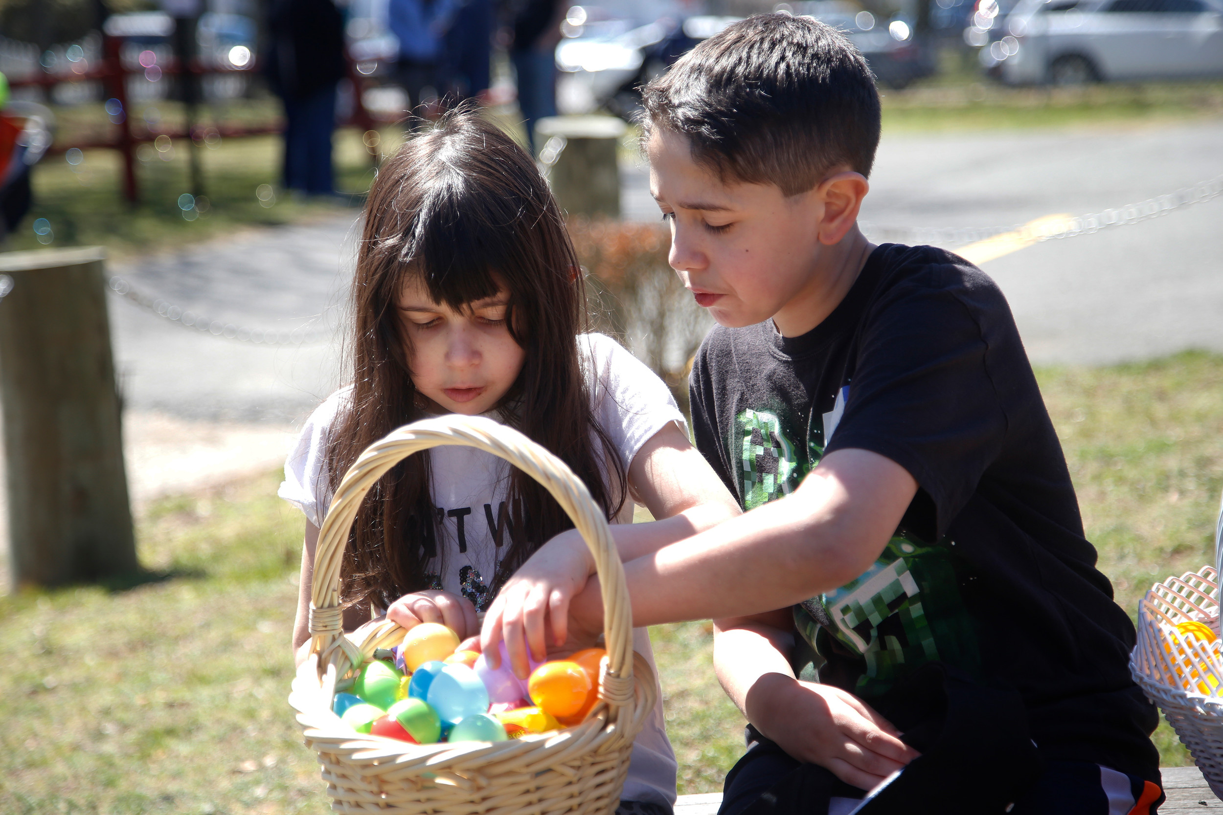 Julianna and Salvatore Cassese sorted through their egg collection.