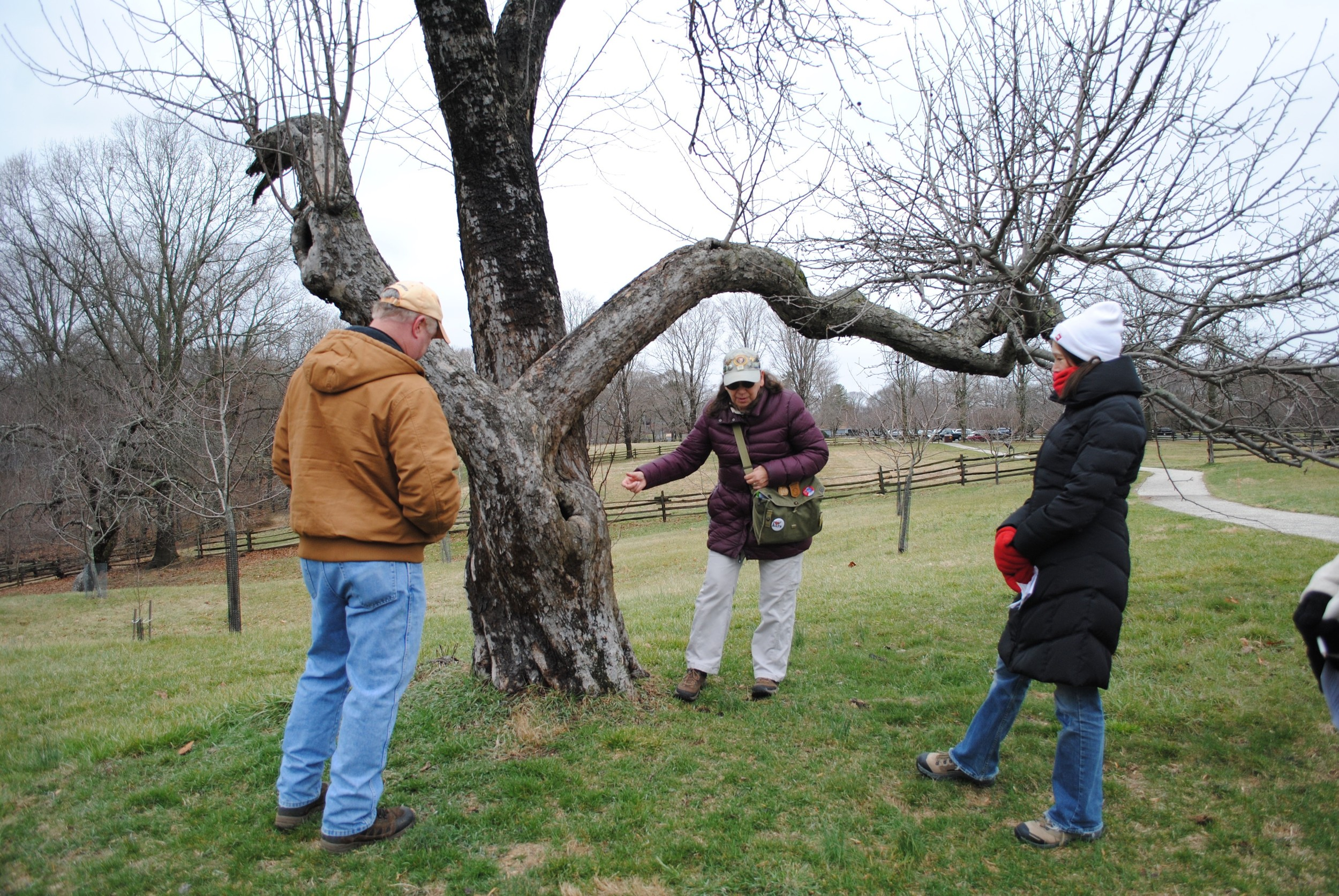 Lindberg explains the orchard that used to be on the property to Tom Hornosky and Linda Robbins.