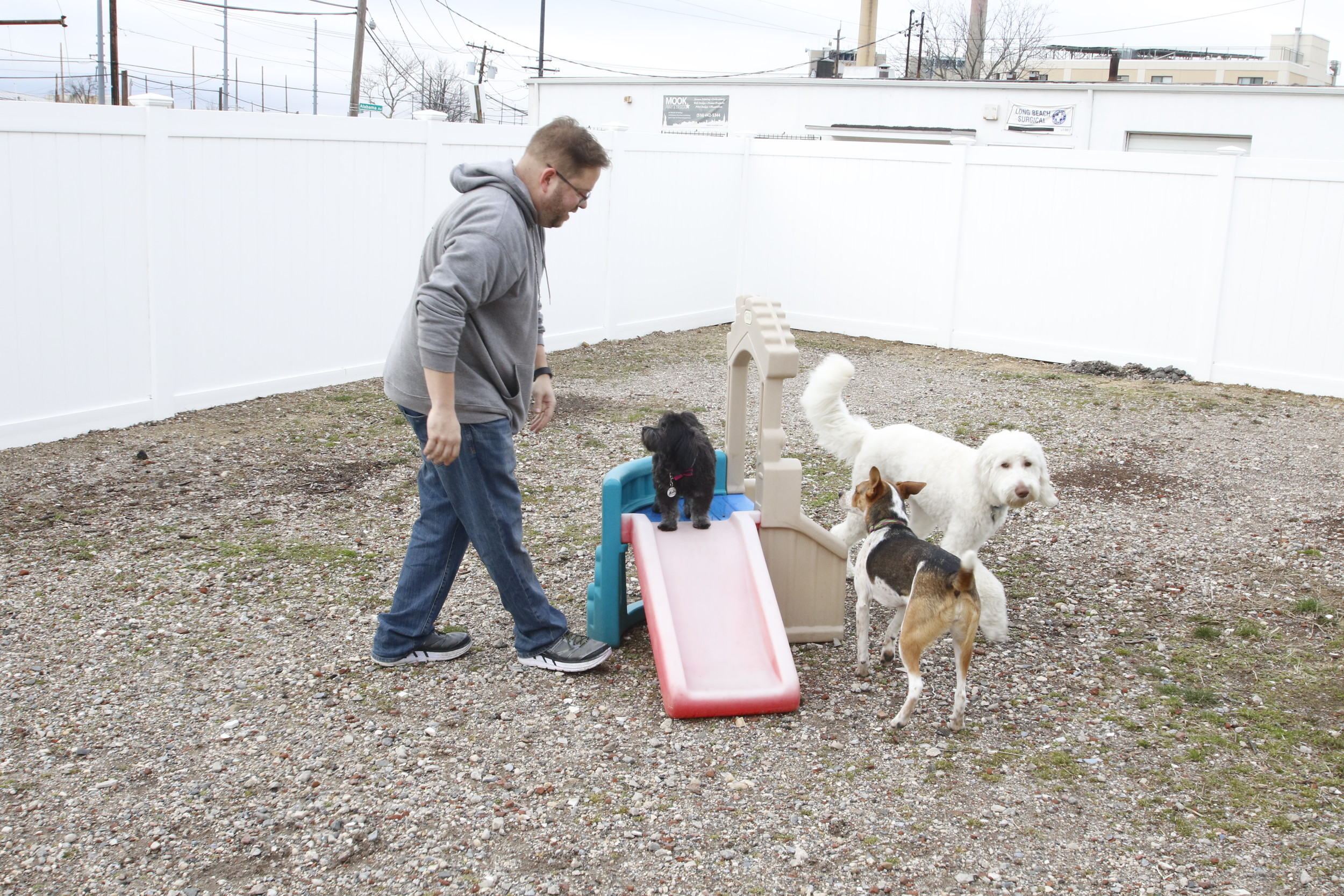 Judson played with some of the pets in Island Bark's side yard.